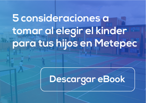 Ebook-Metepec